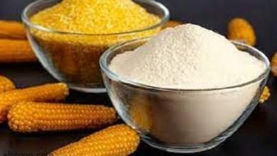 دقيق الذرة وفوائده الصحية - صحيفة هتون الدولية