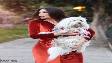 كلب يعض الفنانة سارة نخلة .. وهذا ماحدث لها! - صحيفة هتون الدولية