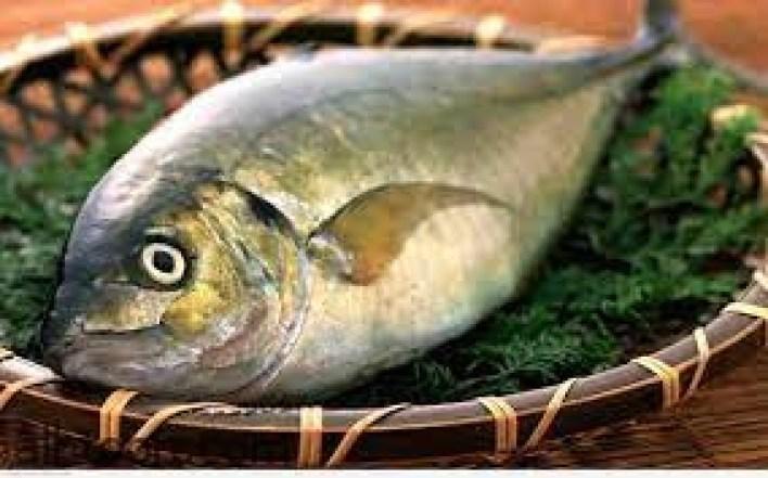 ماذا يفعل السمك بجسمك؟ -صحيفة هتون الدولية
