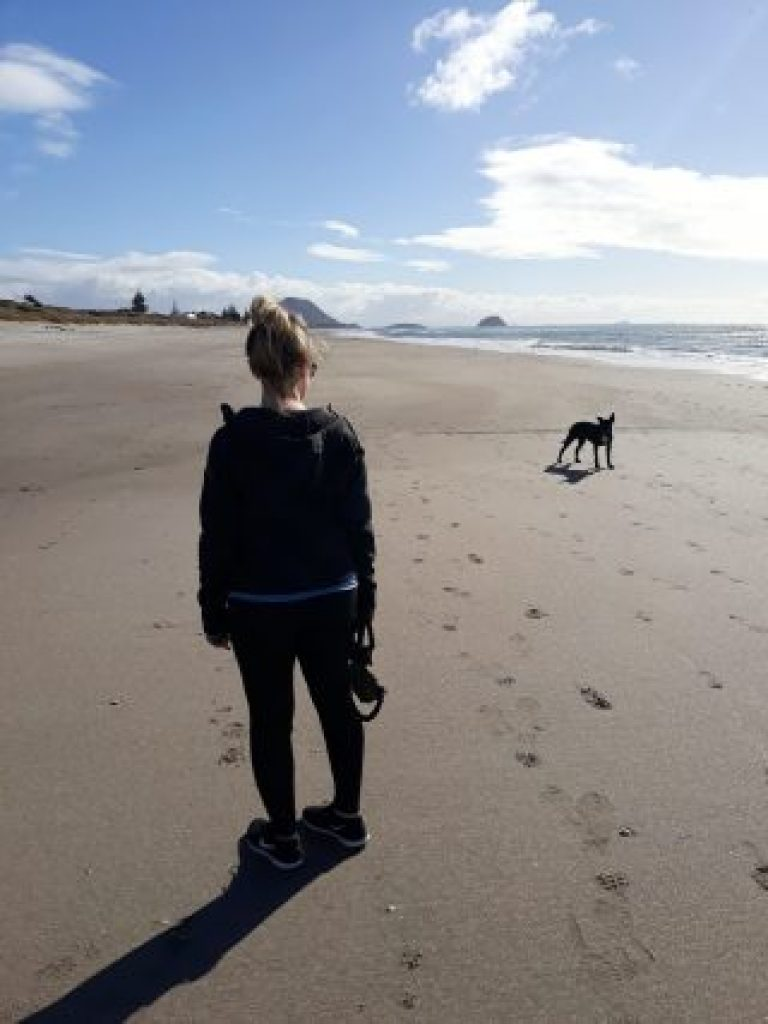 House sitting in New Zealand, get free accommodation, dog walking, best house sitting websites
