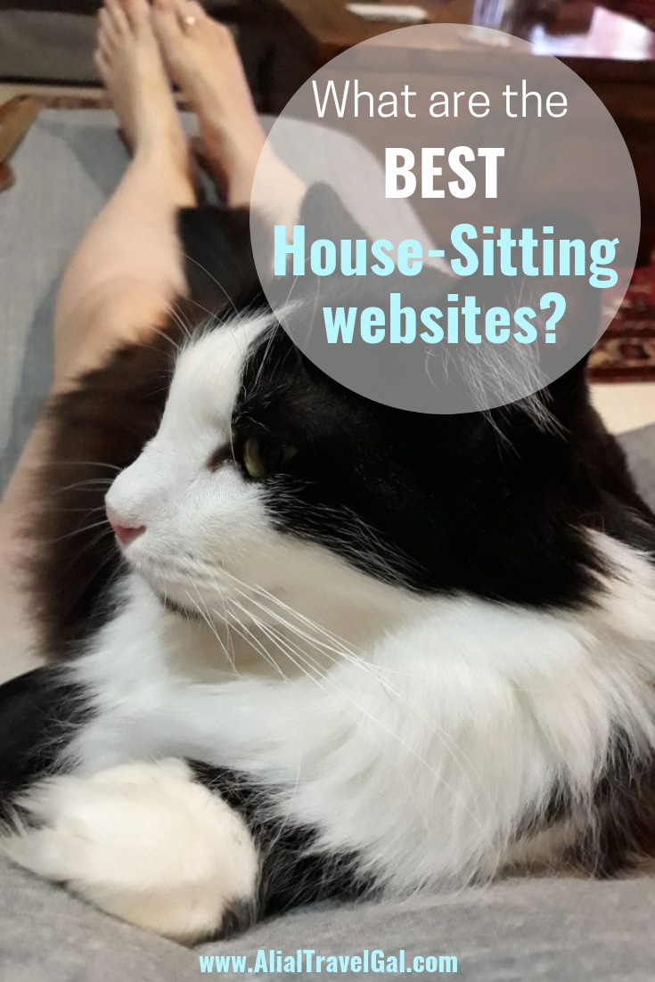 best house sitting websites house sitting jobs