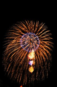 firework-1443840-639x961
