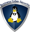 Business Cyber Security