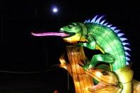 Aggh! - Illuminasia - Calgary Zoo