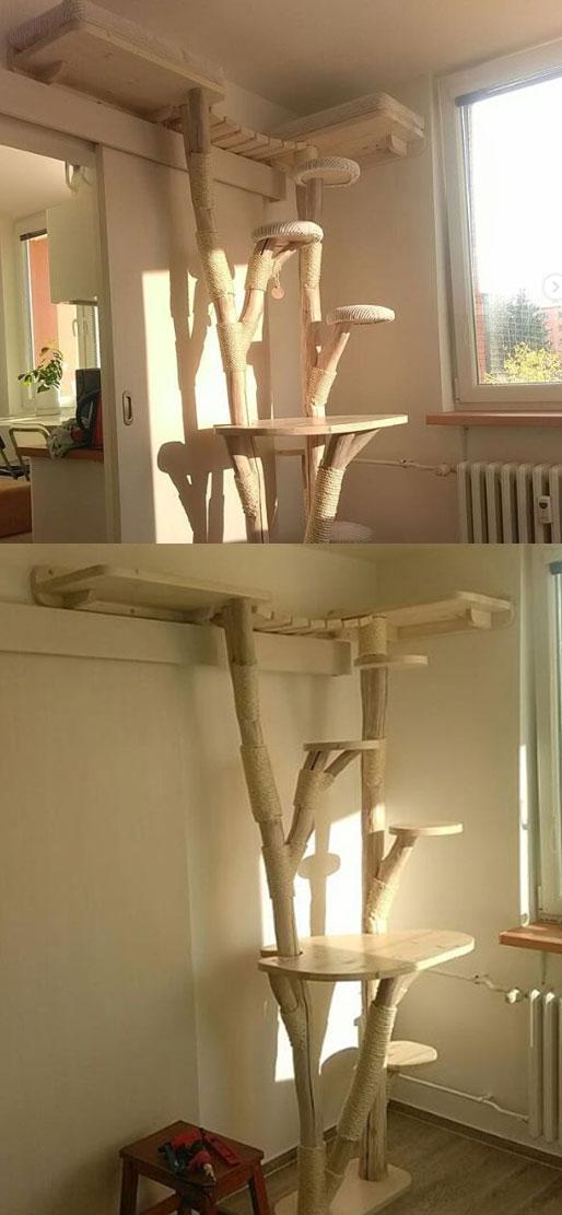 cat tree stylish