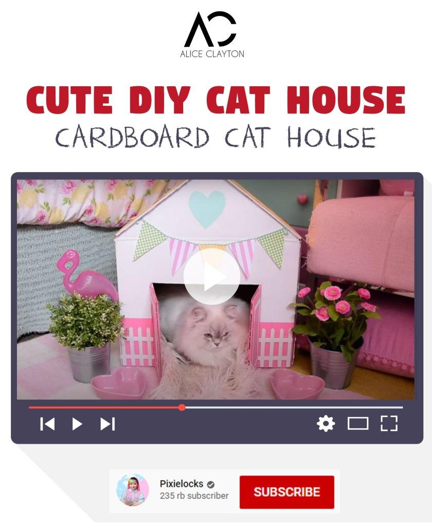 Cute DIY cat house
