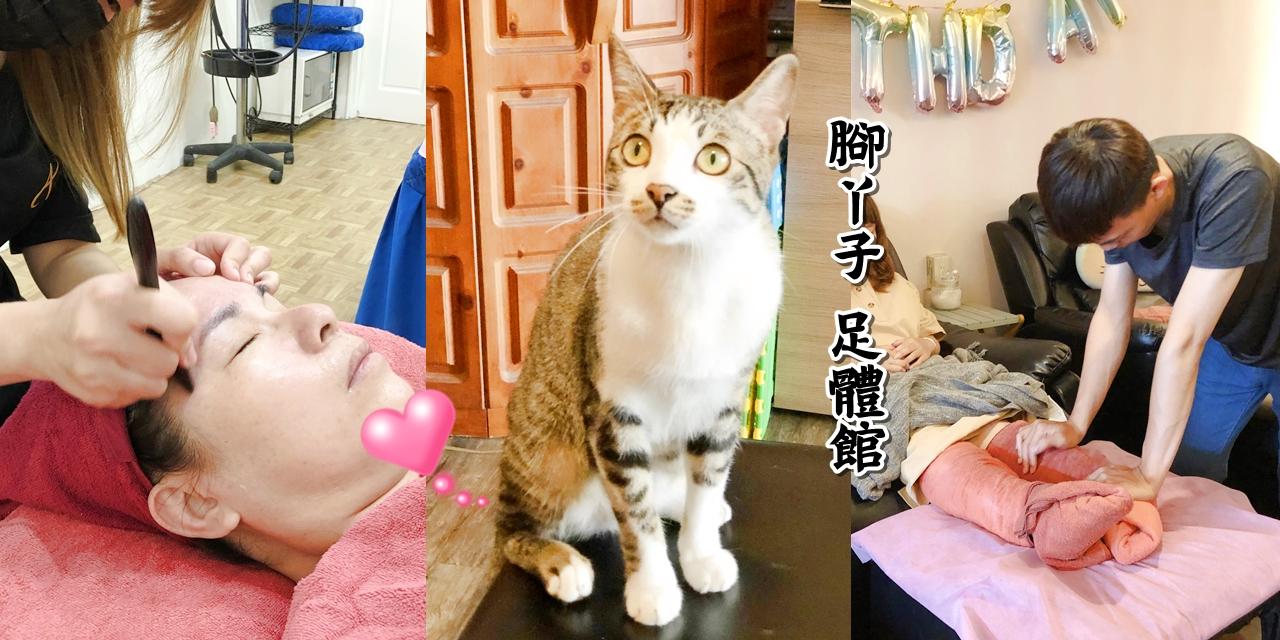 【台南按摩】貓奴照過來!!!營業至凌晨一點的腳底按摩在這裡《腳丫子 足體館》還有萌店貓陪你一起玩喔~|經絡美容| |臉部保養| |身體保養|