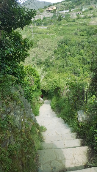 Some of the steps down to the village