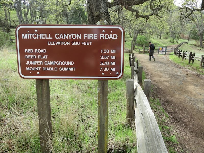 Juniper campground to moses rock is a 1.3 mile moderately trafficked out and back trail. Mount Diablo Base To Summit 13 Mile Loop Hike Alice Hikes