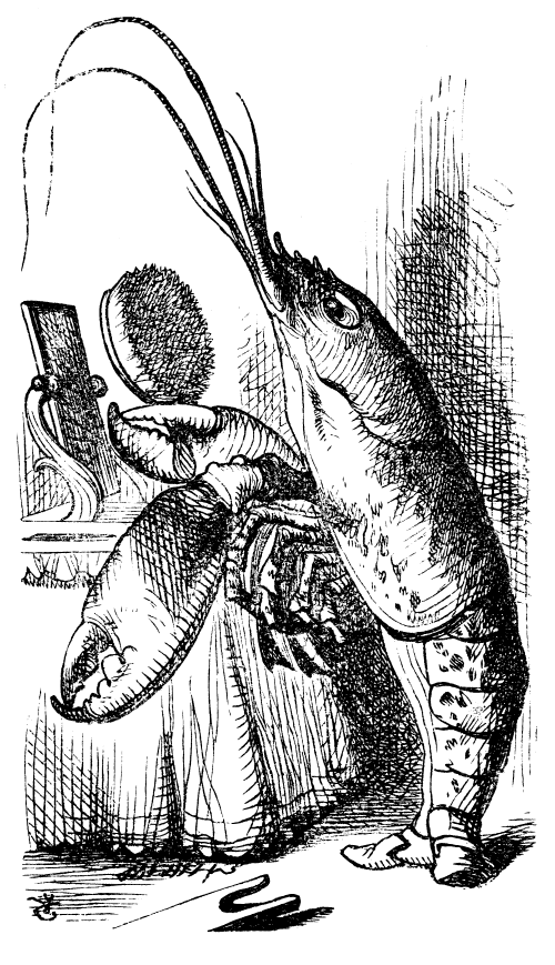 lobster looks in mirror