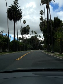 The drive up Rodeo Drive, the trees cast with the perfect flat lighting.