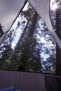 Our view from the tent.