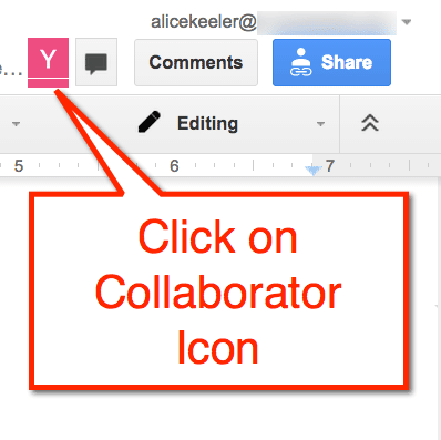 Google Doc Collaborator Icon