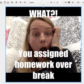 What alice keeler assigned homework over break