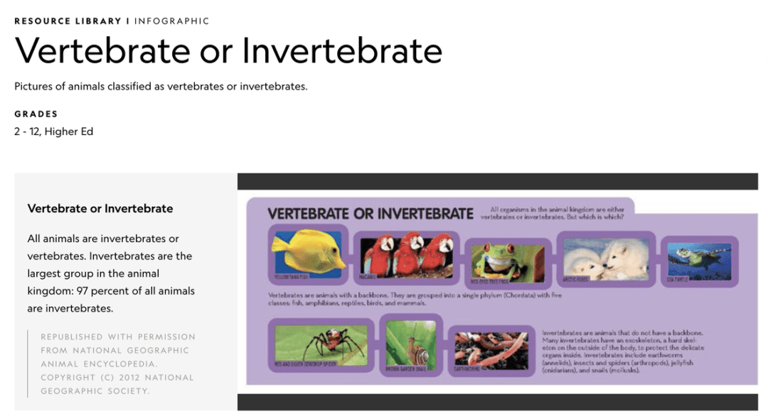 infographic on invertebrates