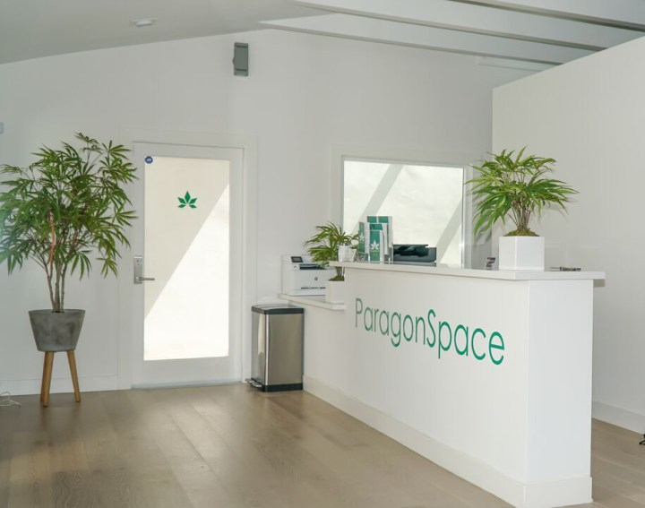 Paragon Space: The World's First Cannabis Co-Working Space