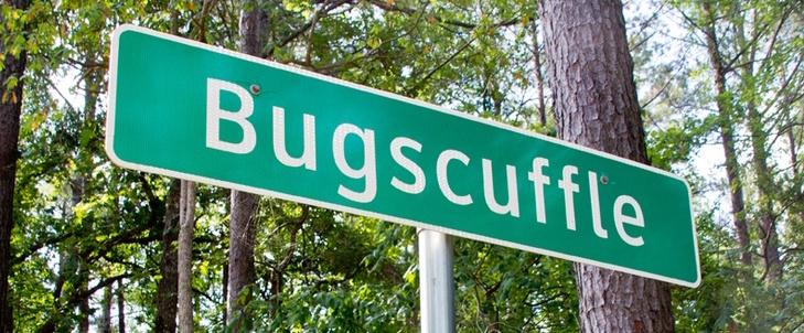Bugscuffle