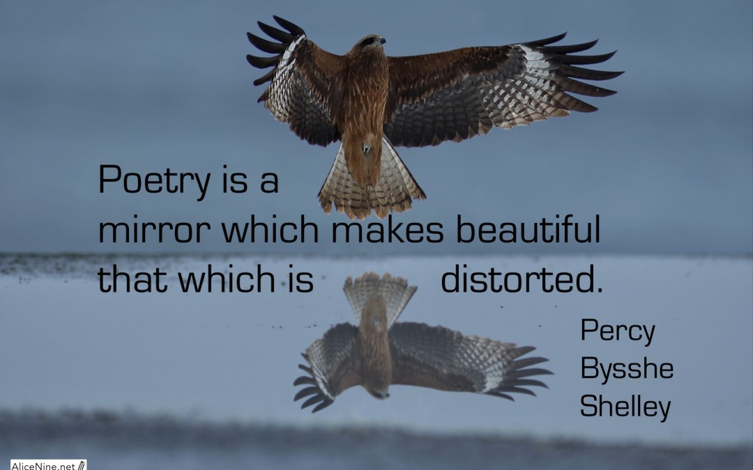 Poetry is… #29