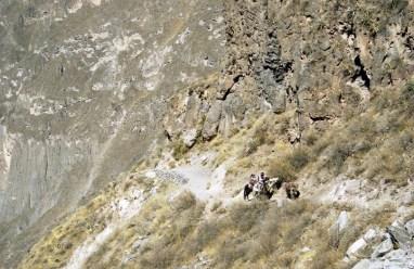 colca-canyon