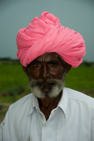 the-shephard-with-the-pink-turban