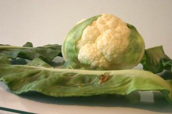 higuchi-cauliflower