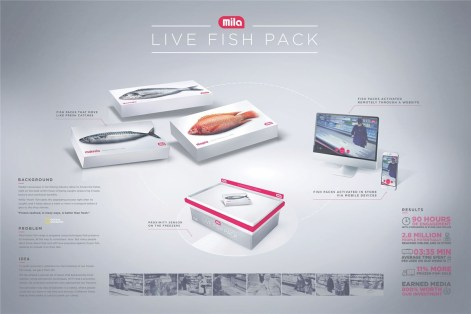 y_r_warsaw_mila_the_live_fish_pack