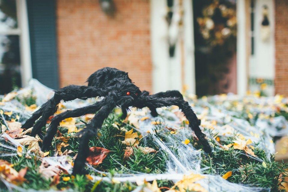 Black Furry Outdoor Halloween Spider