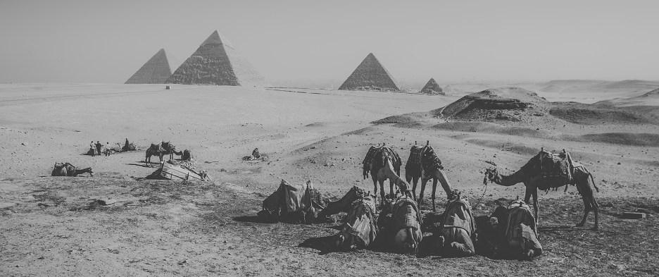 desierto alicia soblechero fotografia viajes
