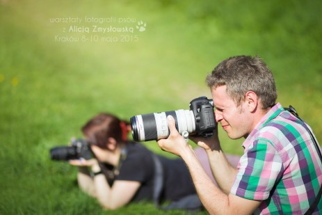 dog-photography-workshops-with-alicja-zmyslowska-krakow-8-10-may-2015_17428426589_o