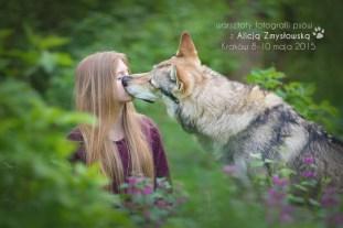 wolfie_17677280388_o