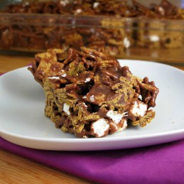 Golden Grahams S'mores Bars from Alida's Kitchen