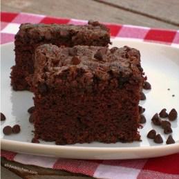 Chocolate Picnic Cake | alidaskitchen.com