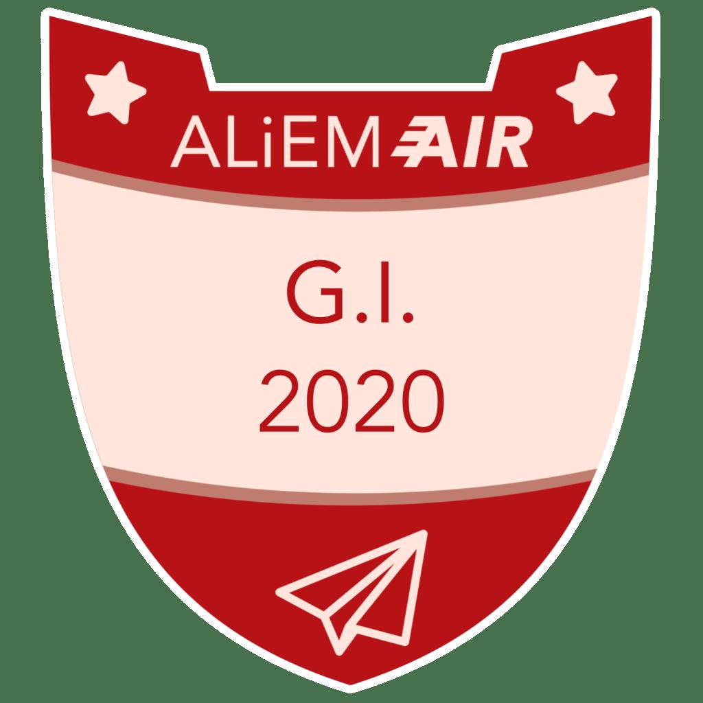 GI badge 2020