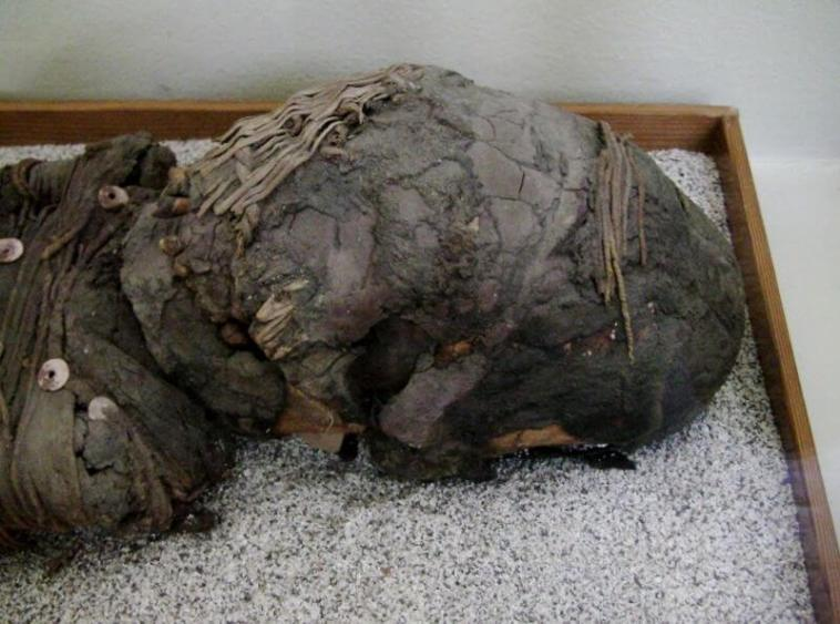 Elongated Skulls From The Coast Of Chile And The World's Oldest Mummies 1