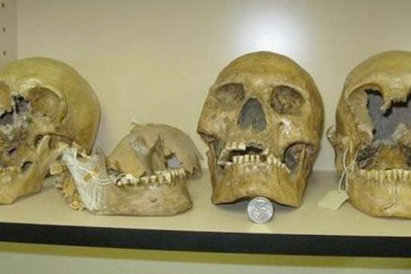 Smithsonian Admits to Destruction of Thousands of Giant Human Skeletons in Early 1900′s 2