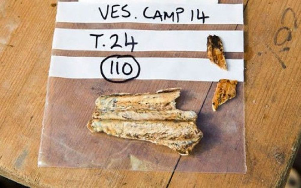 A shard of bone found at the site