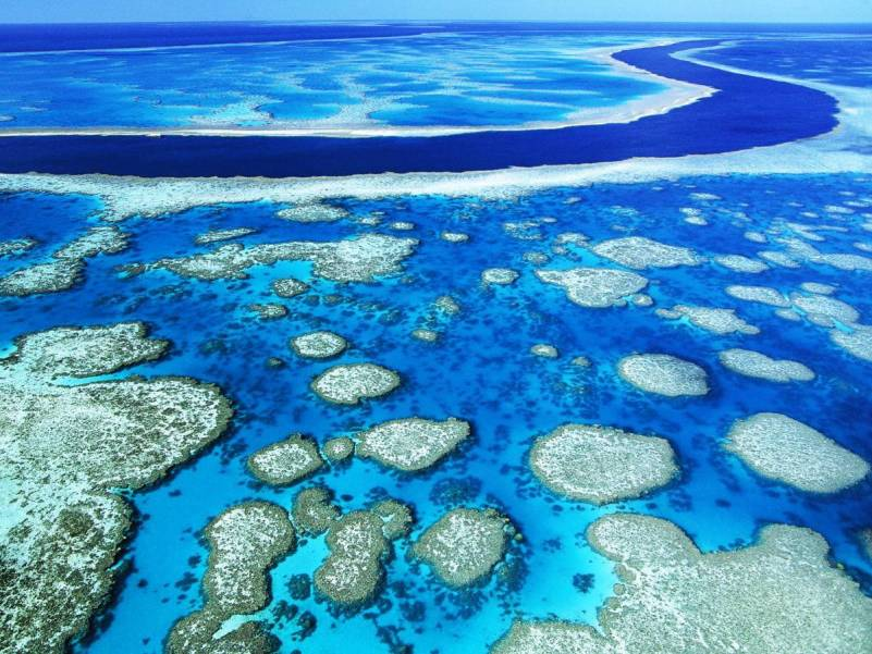 Great-Barrier-Reef-3_0