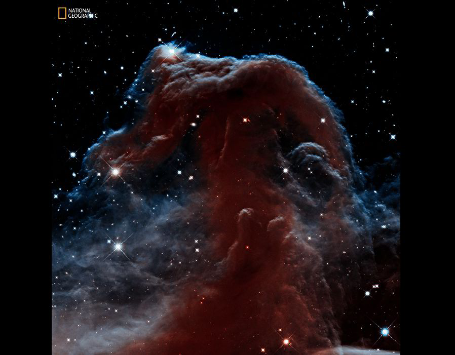 Star Power. Hubble's Wide Field Camera 3 looks through the Horsehead Nebula in a uniquely detailed infrared image