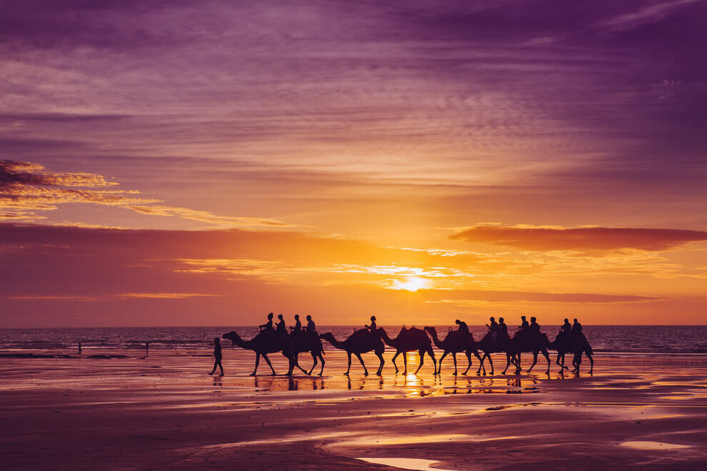 Oh, just some camels enjoying the sunset in Broome, Western Australia.