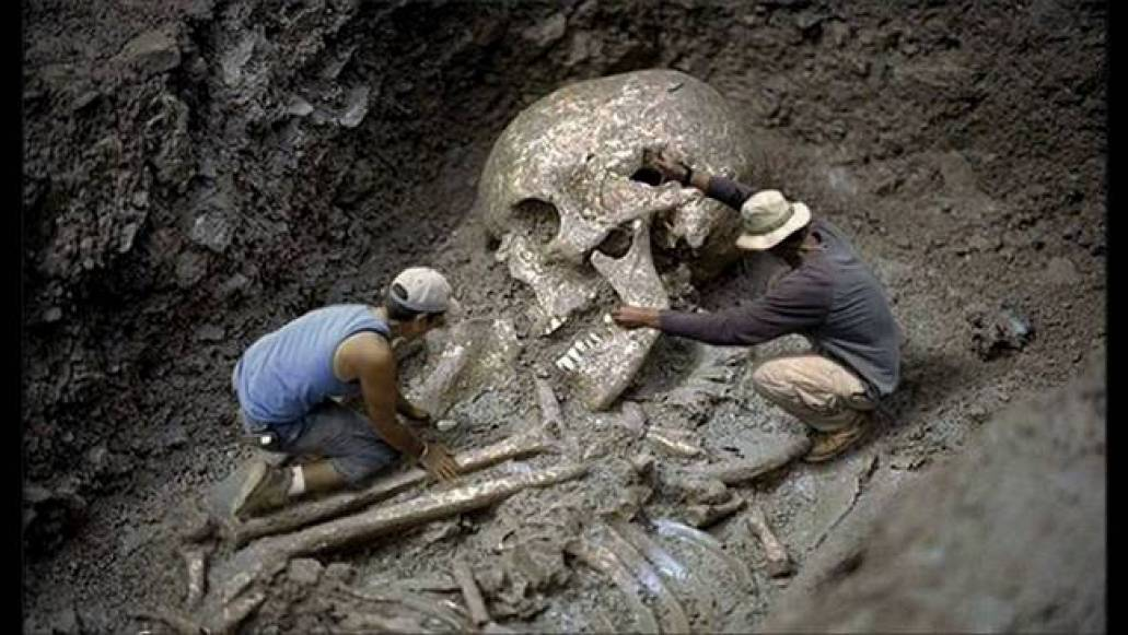Giant Skeleton Found In Brazil