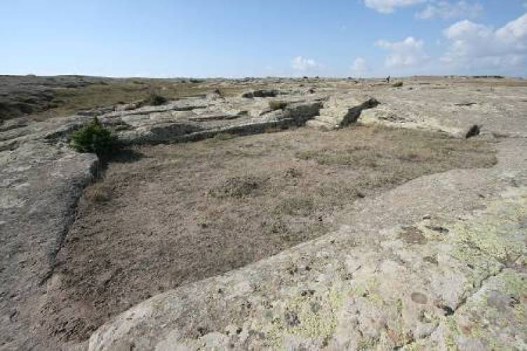 Petrified impressions Dr. Alexander Koltypin said were likely left by a building amid the petrified wheel ruts. (Courtesy of Dr. Alexander Koltypin)