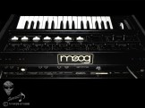 Micromoog-09