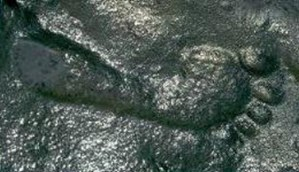 STRANGE--290 MILLION YEARS OLD--DISCOVERED IN NEW MEXICO--BEFORE ITS NEWS.COM cropped