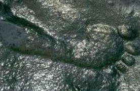 Is a 290 year old footprint evidence of time travel?
