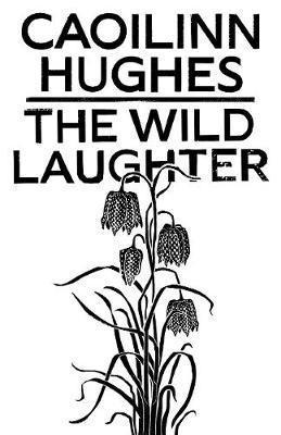 The Wild Laughter by Caoilinn Hughes: Brotherly love, or the lack of it