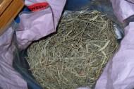 Sweet hay