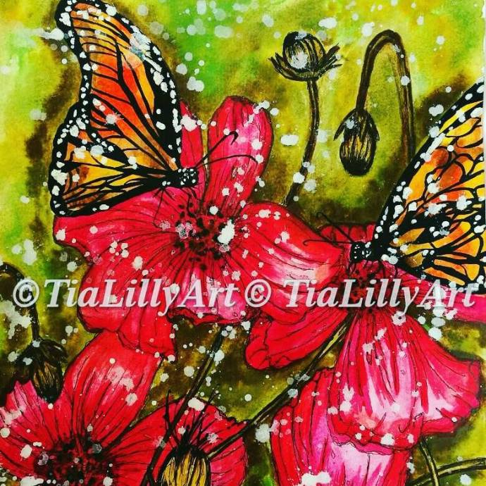 tialilly butterfly