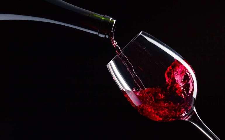 Argentina Vineyards