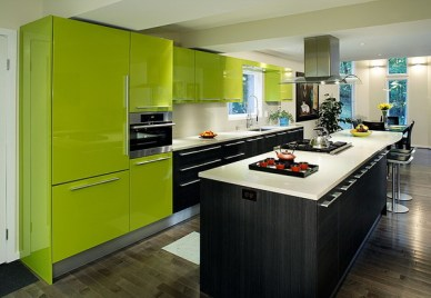 Modern Kitchen with Green & Black Color Scheme from BestHomeDesign