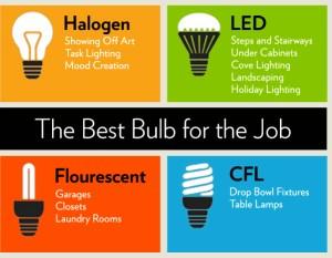 Best Light Bulbs, HouseLogic.com